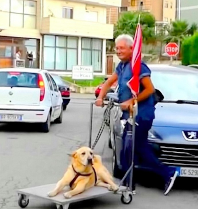 This image has an empty alt attribute; its file name is devoted-grandpa-takes-his-sick-senior-dog-on-a-walk-every-day-01-7.jpg